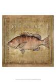 Ocean Fish VII Prints