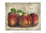 Fresco Fruit VII Posters by Kate Ward Thacker