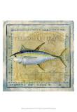 Ocean Fish XII Poster