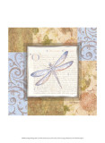 Collaged Dragonflies I Prints by Linda Grayson
