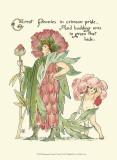 Shakespeare's Garden V (Peony) Láminas por Crane, Walter