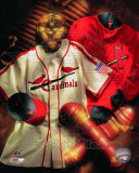 St.Louis Cardinals - St. Louis Cardinals Cooperstown Collage Photo