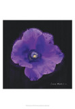 Vibrant Flower VIII Print by Lola Henry