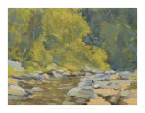 Chesterfield Gorge Giclee Print by Stephen Calcasola