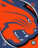 Charlotte Bobcats - Charlotte Bobcats Team Logo Photo