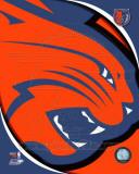 Charlotte Bobcats - Charlotte Bobcats Team Logo Photo