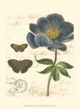 Small Vintage Floral I Prints