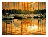 Marina Sunrise I Giclee Print by Danny Head