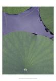 Lotus Detail X Art by Jim Christensen