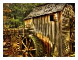 Water Wheel Giclee Print by Danny Head