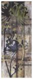 Lace & Light II Posters by Jennifer Goldberger