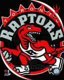 Toronto Raptors - Toronto Raptors Team Logo Photo