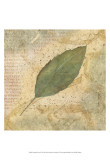 Antiqued Leaves IV Posters by Linda Grayson