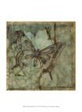 Small Ethereal Wings IV Plakater af Jennifer Goldberger