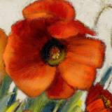 Poppy Splendor Square II (detail) Art by Lanie Loreth