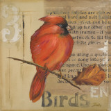 Red Love Birds II Prints by Patricia Pinto