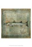 Ocean Fish I Prints