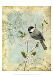 Songbird Sketchbook II Prints by Jane Maday