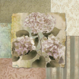 Botanical Hydrangeas Prints by Elizabeth Medley