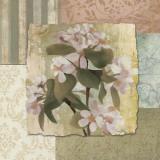 Botanical Blossom Posters by Elizabeth Medley