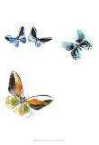 Butterflies Dance VII Prints
