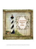 Florida Lighthouse IX Prints