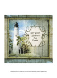 Florida Lighthouse VI Print