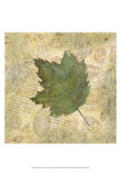 Antiqued Leaves III Art by Linda Grayson