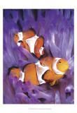 Jeweled Fish I Prints by Lola Henry