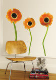 Orange Poppies Wall Decal