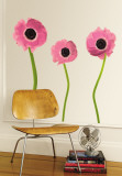 Pink Poppies Muursticker
