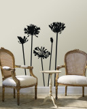 Black Agapanthus Vinilo decorativo
