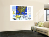 1993 Water Precious Resource Map Wall Mural by  National Geographic Maps