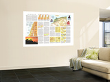 1972 Peoples of the Middle East Theme Premium Wall Mural by  National Geographic Maps