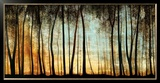 Golden Forest Prints by Carolyn Reynolds