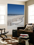 USA, New York, Long Island, the Hamptons, Westhampton Beach, Beach Erosion Fence Wall Mural by Walter Bibikow