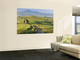 Track, San Quirico D&#39;Orcia, Val D&#39;Orcia, Tuscany, Italy Wall Mural by Peter Adams