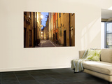 Historic Old Street in Gamla Stan (Old Town) in Stockholm, Sweden Wall Mural by Peter Adams