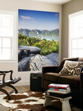 View of Ao Ton Sai and Ao Lo Dalam Beaches, Ko Phi Phi Don, Thailand Wall Mural by Ian Trower