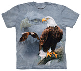Eagle Collage Shirts