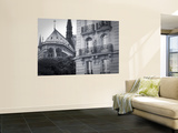 Notre Dame Cathedral, Ile De La Cite, Paris, France Wall Mural by Jon Arnold