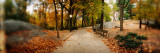 Walkway in a Park, Central Park, Manhattan, New York City, New York State, USA Photographic Print