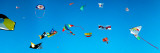 Low Angle View of Kites Flying, Bouches-Du-Rhone, France Photographic Print