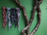 Fabric Samples And Tree Outside a Store, Colonia Del Sacramento, Uruguay Photographic Print