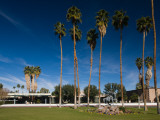 Palm Trees in Front of a Government Building, Palm Springs City Hall, Palm Springs Photographic Print