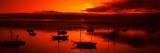 Boats in a Bay, Morro Bay, San Luis Obispo County, California, USA Fotografisk trykk