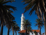 Palm Trees in Front of a Lighthouse, Punta Del Este, Maldonado, Uruguay Photographic Print