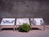 Photos of Nelson Mandela And Walter Sisulu, Robben Island Prison Museum, Robben Island Photographic Print