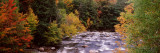 River Flowing Through a Forest, Ausable River, Adirondack Mountains, Wilmington, Essex County Fotografie-Druck