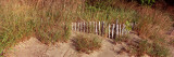 Fence with Grass at the Lakeside, Lake Erie, Presque Isle State Park, Erie, Pennsylvania, USA Photographic Print